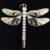 pale green dragonfly
